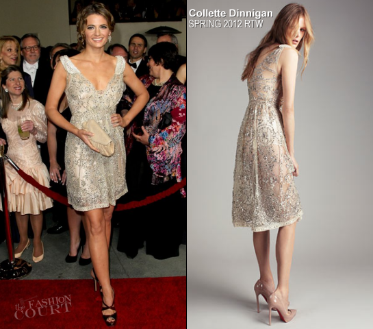 Stana Katic in Collette Dinnigan | 2012 Directors Guild Of America Awards